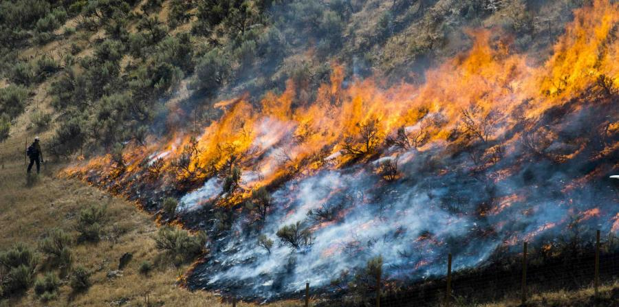 Firewall announced for six states of the Great Basin in the United States
