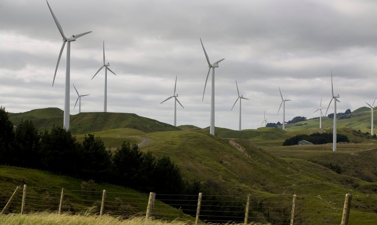 The federal government reactivates a loan program for the implementation of renewable energy systems