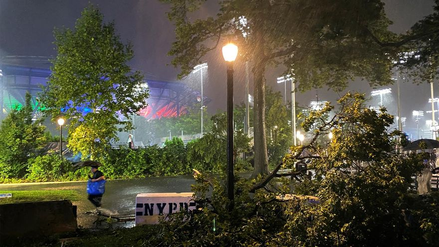 A man tries to walk through huge puddles next to a downed tree outside the Billie Jean King National Tennis Center.